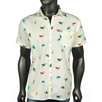 CAMISA COLORFUL FLAMINGOS - 144